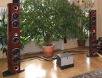 Magellan Grand Concert-2 - aktuelles Modell Limited Edition Bubinga (Paar)