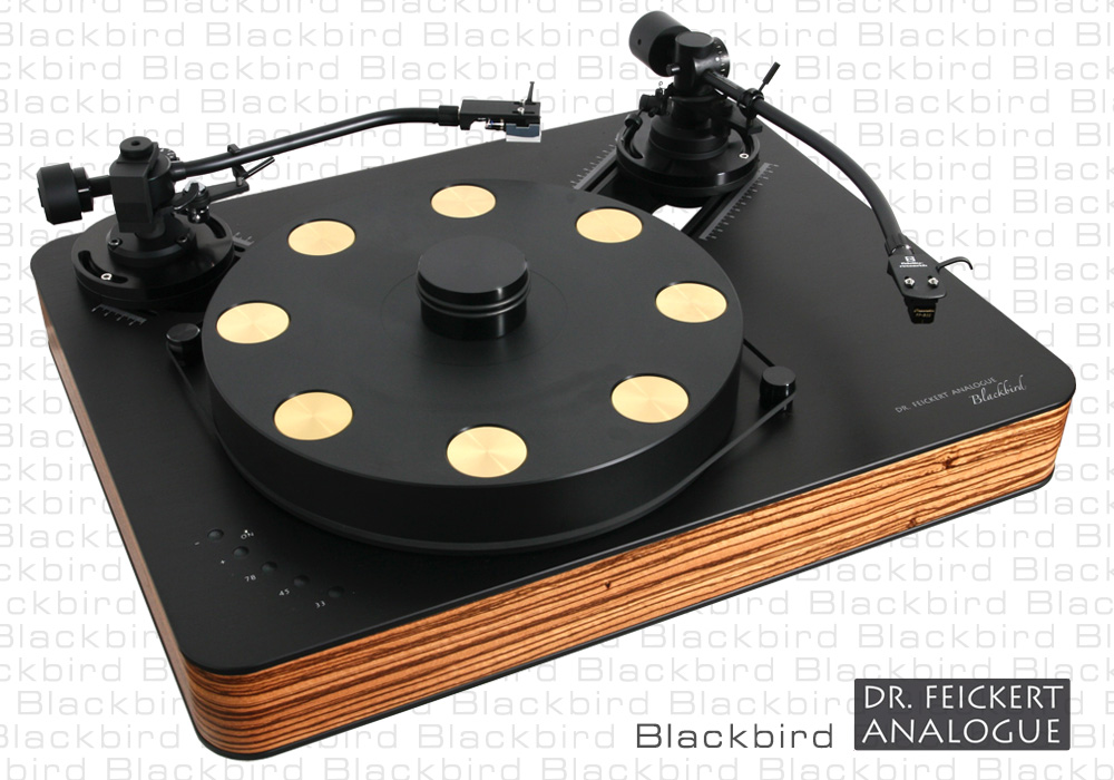Dr. Feickert Analogue - Blackbird Dr. Feickert Analogue - Blackbird