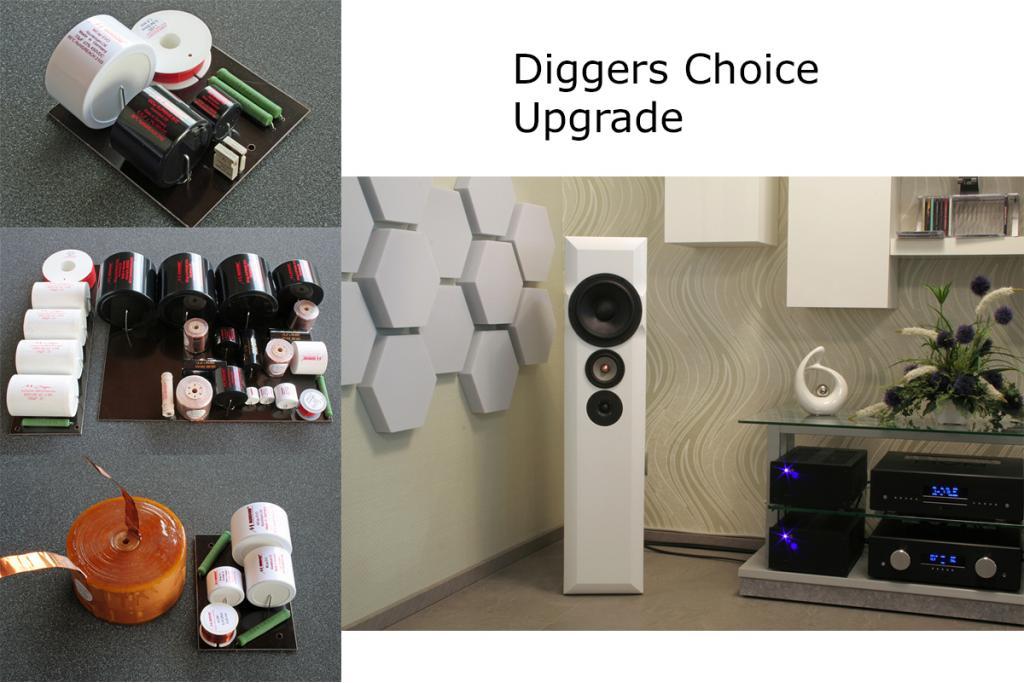 Lautsprecher-Upgrade für Diggers Choice